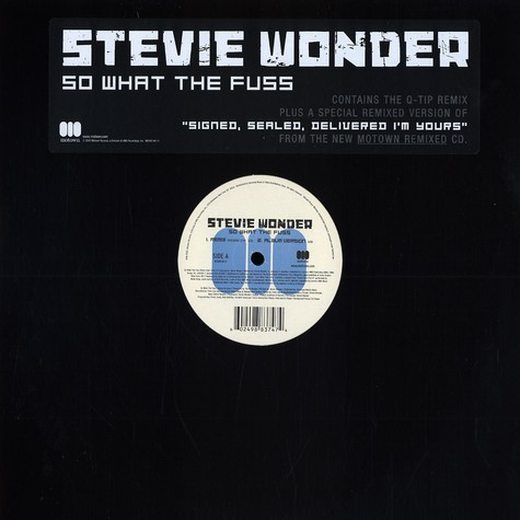Stevie Wonder - So what the fuss remix feat. Q-Tip
