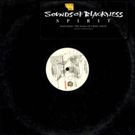 Sounds of Blackness - Spirit feat. Craig Mack
