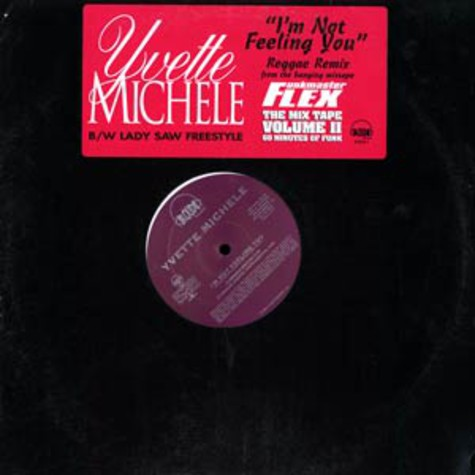 Yvette Michele / Lady Saw - I'm not feeling you Reggae remix / Freestyle