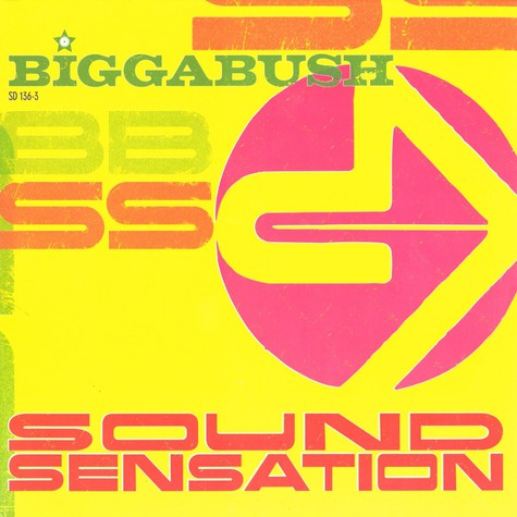 Biggabush - Sound sensation