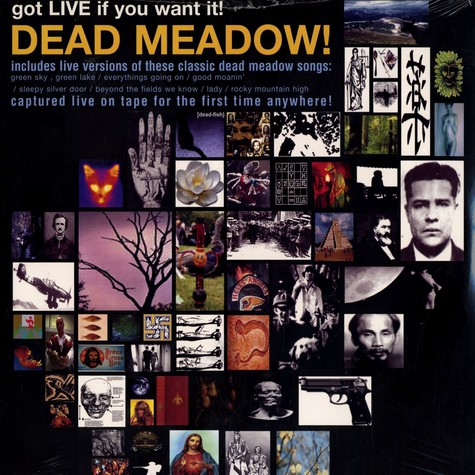 Dead Meadow - Got life if you want