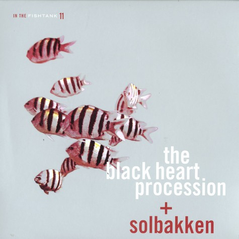 Black Heart Procession & Solbakken - In the fishtank 11