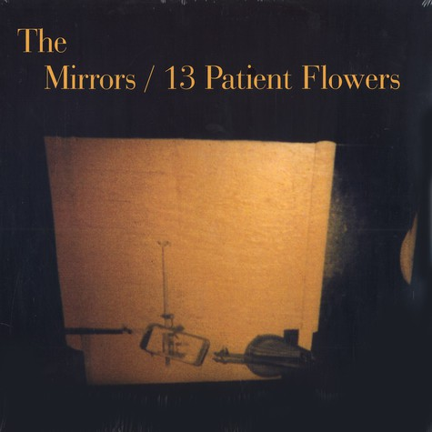 Mirrors, The - 13 patient flowers