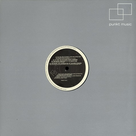 Richard Davis - Meaning & in the air - the remixes