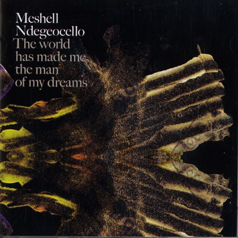 Meshell Ndegeocello - The world has made me the man of my dreams