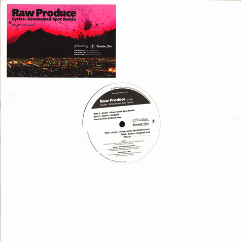 Raw Produce - Cycles Grooveman Spot remix