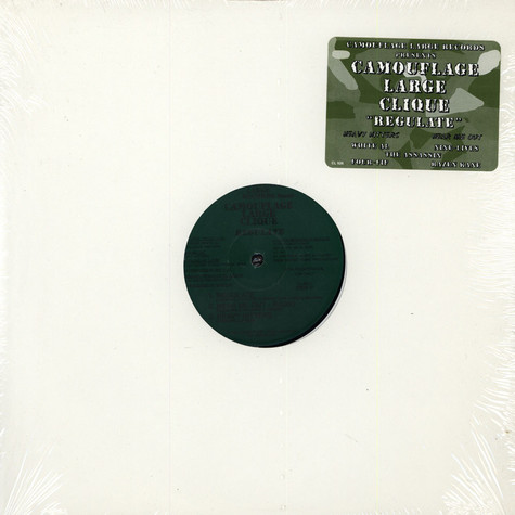 Camouflage Large Clique - Regulate