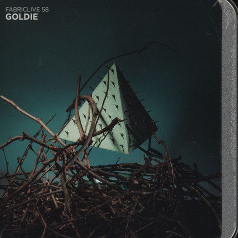 Goldie - Fabric Live 58