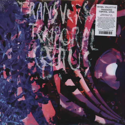 Animal Collective - Transverse Temporal Gyrus