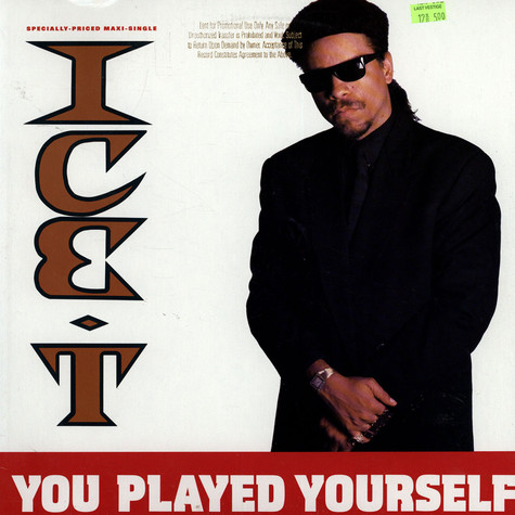 Ice T - You Played Yourself