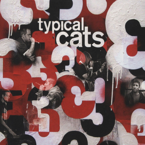 Typical Cats - 3