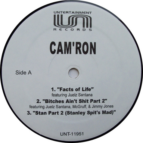 Cam'ron - Facts Of Life