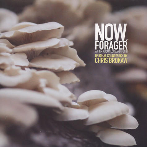 Chris Brokaw - OST Now, Forager