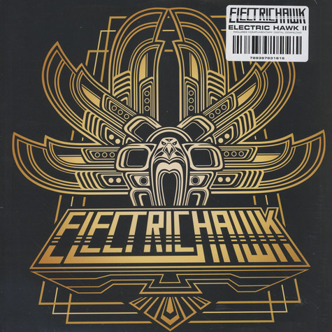 Electric Hawk - II