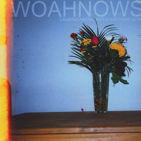Woahnows - Understanding And Everything Else