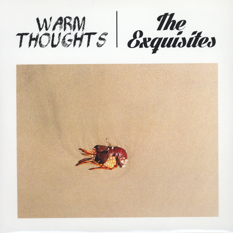 Warm Thoughts / Exquisites - Split 7""