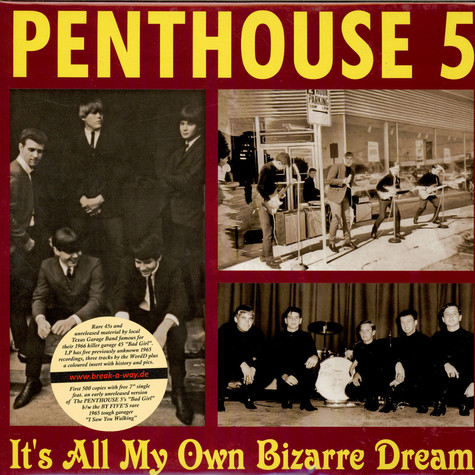 Penthouse 5 - It's All My Own Bizarre Dream