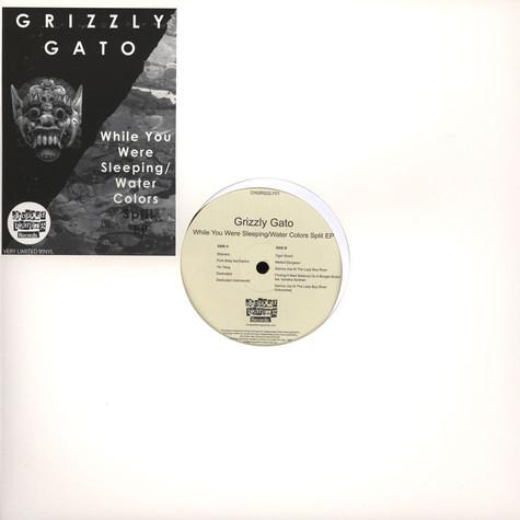 Grizzly Gato - While You Were Sleeping / Water Colors Split EP