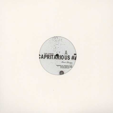 Theo Parrish - Capritarious #7 / Levels