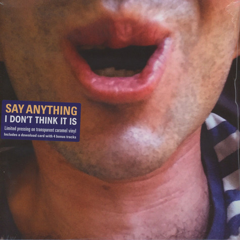 Say Anything - I Don't Think It Is