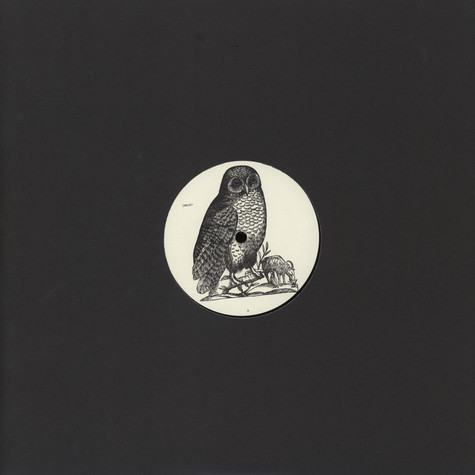 Unknown - Owl 1