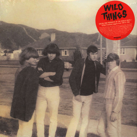 V.A. - Wild Things: 16 Kiwi Freakbeat Nuggets From 1966-1968