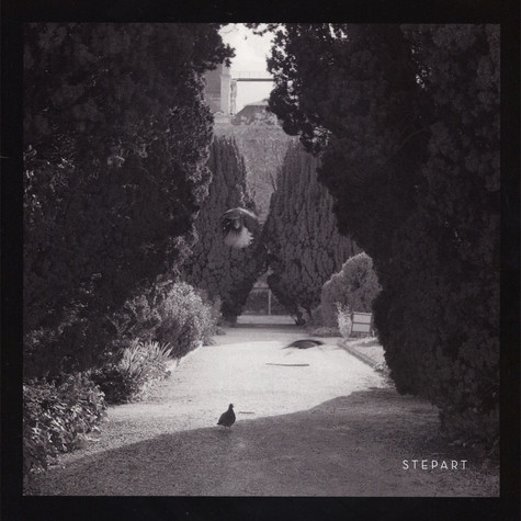 Stepart - The Curve