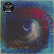 Avey Tare of Animal Collective - Eucalyptus