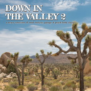 V.A. - Down In The Valley 2