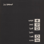 DJ Shadow - What Does Your Soul Look Like