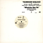 Terror Squad - Whatcha gon do
