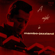 Pete Terrace - A Night In Mambo-Jazzland